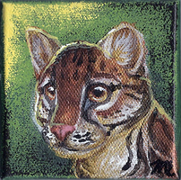 Mini Ocelot Painting by therougecat