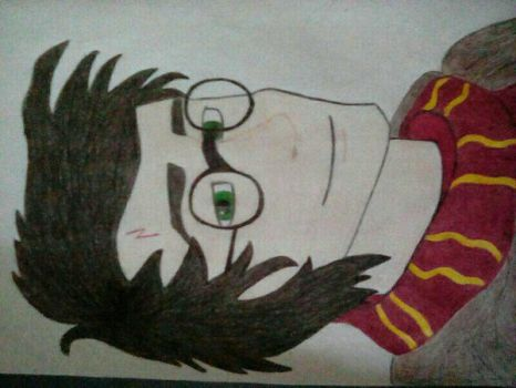 Harry Potter by Dancingmyheartout4