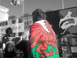Download 2010- Welsh cape by ads2142