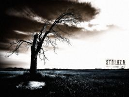 S.T.A.L.K.E.R - Clear Sky 5 by x-tender