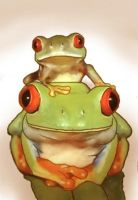 Red-eyed Tree Frog_pt.2 by restlesswillow