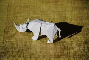 White Rhino by origamaniac