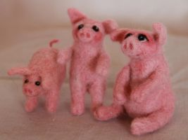 Three little pigs by Shoshannah84