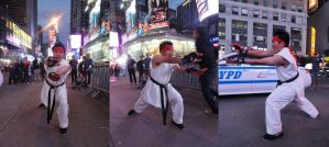 Street Fighter: Ryu by TheSpazOutLoud