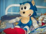 Jumbo Sonic plush by Firestar-the-Werecat