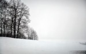 Whitescape II by Dhante