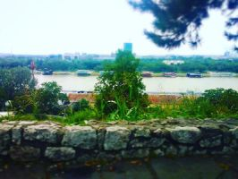 The River in Belgrade by NuclearIncandesence