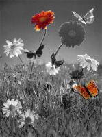 Extra Credit Butterfly And Flower by Chyliethecrazy1