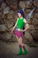 Vidia - The Pirate Fairy by Timon-Twinkle