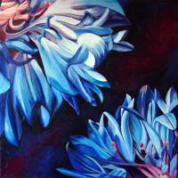 Cornflower Divided by tonyarama