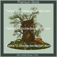209-Twins72-Stocks by Twins72-Stocks
