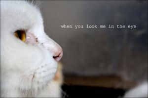 when_you_look_me by TyQa