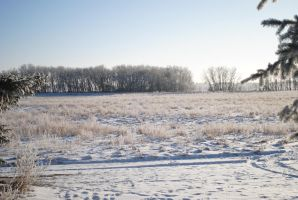 Winterscape 11 by TWO--GUNS