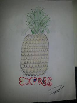 Pineapple Express by Ev4sIoN
