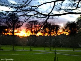 Sunset at Greenwich Park by caliiope