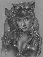 Catwoman Portrait Sketch by benke33
