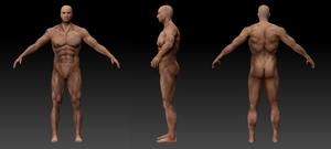 Male sculpt by Cllaud