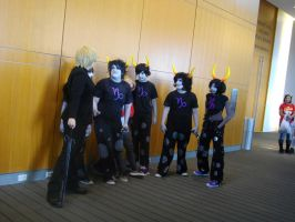 Nekocon pictures 39 by dogo987
