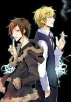 drrr Shizuo and Izaya2 by moonu17