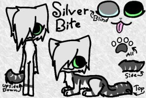 SilverBite Reference Sheet by XxBrighttailxX