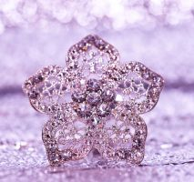 Sparkle for me by pqphotography
