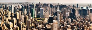 NYC Empire Facing Central Park Panorama by JonathanHasenfus