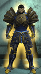 Paladin (DC Universe Online) by Macgyver75