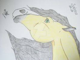 Me as horse, Portrait. by cusa9