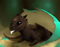 Chocolate Hatchling by DanjiIsthmus