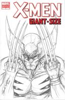 Wolverine Sketch Cover 2 by jamietyndall