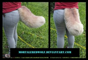 .:Golden Retriever Dog Tail:. by MortaleRedWolf
