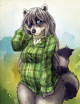 Shy Raccoon by TasDraws