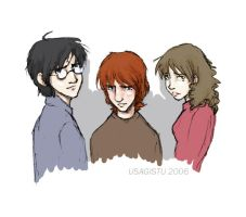 Harry Ron and Hermione by usagistu