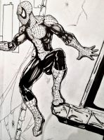 Spiderman pen (2012) by Schwoodz