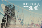 {Brush of Buho} by Poqi