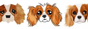 cavalier king charles x3 by chunkysmurf