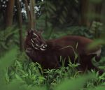 Saola - The Asian Unicorn by mhummelt