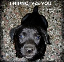 I hipnotize you by QueenNothing20