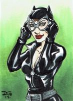 Catwoman PSC by mechangel2002