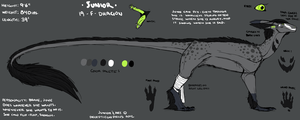 Junior Sketch Reference Sheet 2012 by lambomill