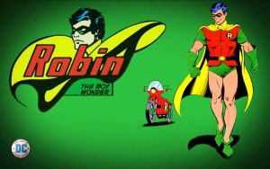 Robin - The Boy Wonder! by Superman8193