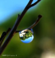 a window to the greens by sinanTR