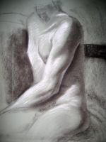 Toned torso drawing by Fenster