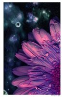 Flowers and space by Swaroop