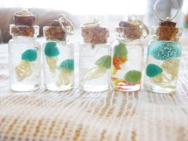 Jellyfish Specimen Bottle Charms by panda314159