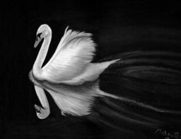 Landing swan in charcoal by Artisan30