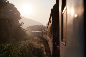 View from a sleeper train in Thailand by Veganvictim