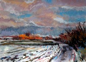 A tiny bit of Snow by Art-deWhill
