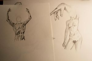 model drawings 2 by Melody68