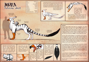 Igya Reference Sheet - French by RubyFeather